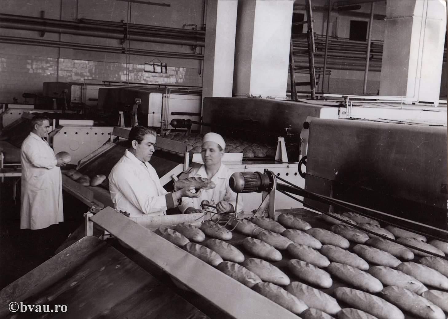 fabrica de paine galati