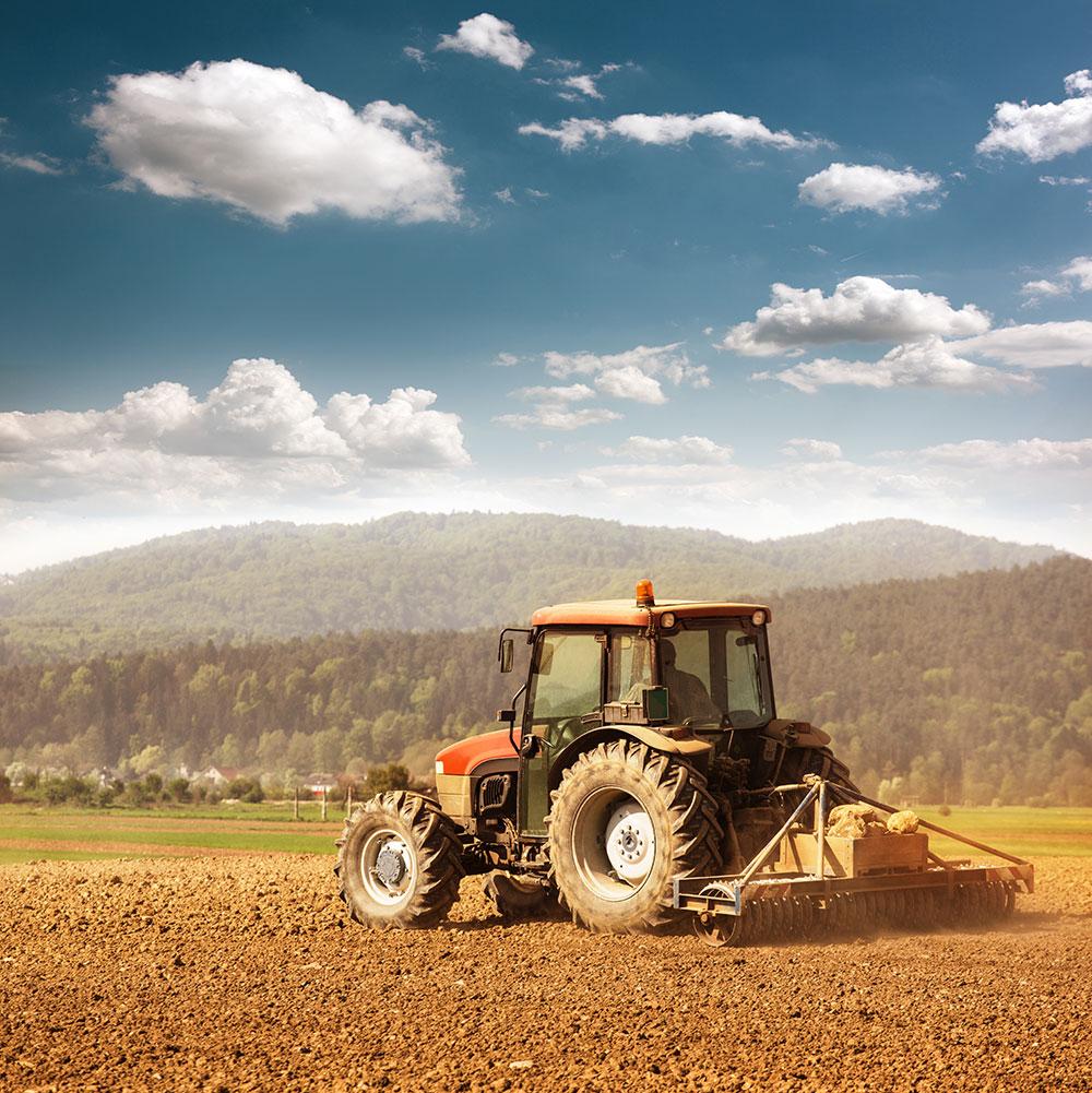 Agricultura romaneasca dupa cel de-al doilea razboi mondial