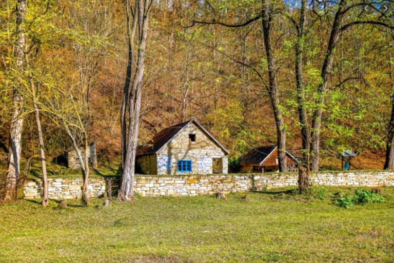 Satul din Apuseni cu case din piatra de peste 150 ani